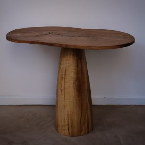 NBPH2252Table Champignon-PhotoNilsBronner - copie